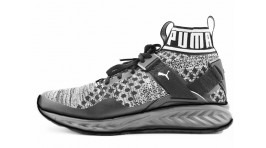 Puma Ignite Evoknit Black Gray черные
